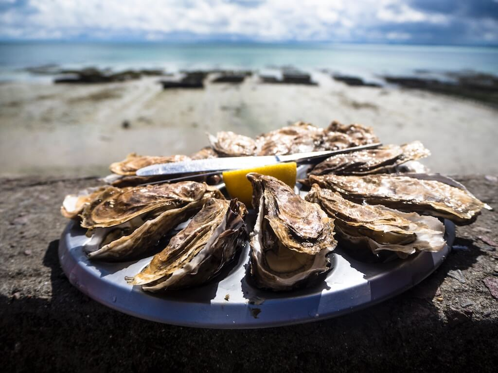 plate of fresh oysters where to eat in Cape Cod