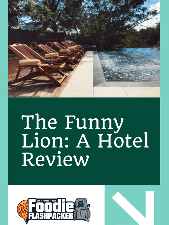 The Funny Lion A Hotel Review