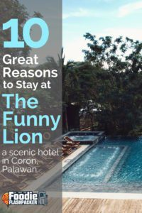 The Funny Lion is a contemporary boutique resort on Coron, Palawan. Check out my review by clicking the picture!