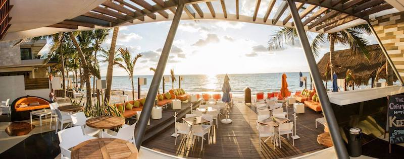 Best Playa Del Carmen Restaurants Where To Eat In Playa