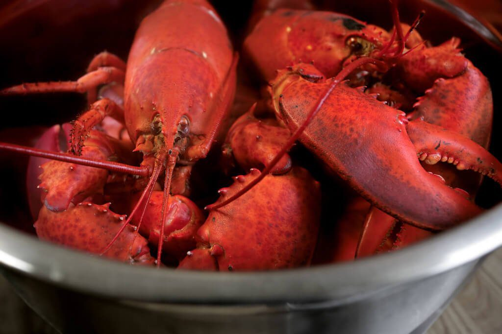 boiled lobsters where to eat in Vallejo, California