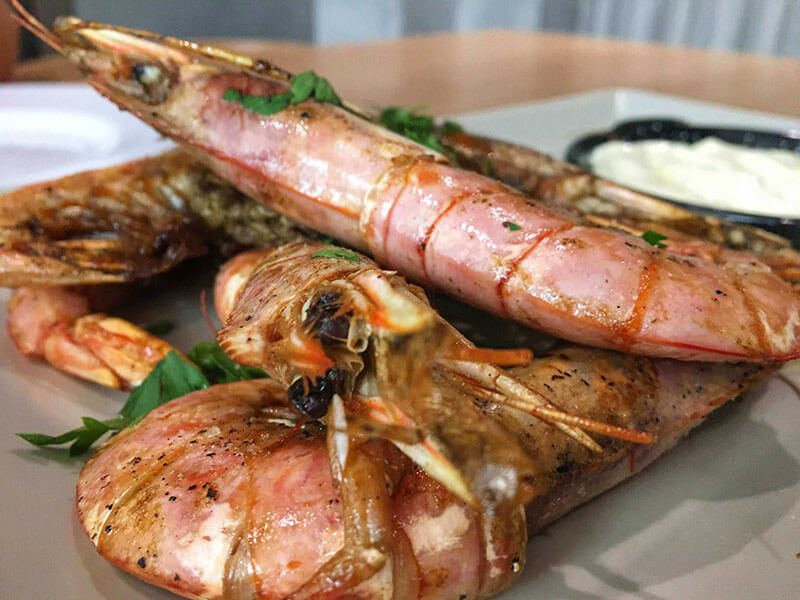 The best restaurants in Tirana, Albania - Salt
