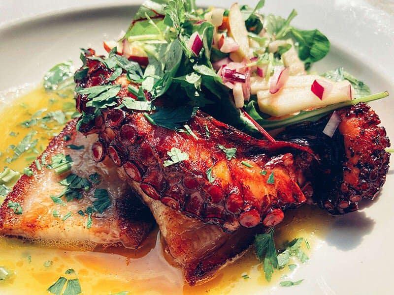 My Favorite Krakow Restaurants | The 16 Best Restaurants In Krakow, Poland - Zazie Bistro - Octopus