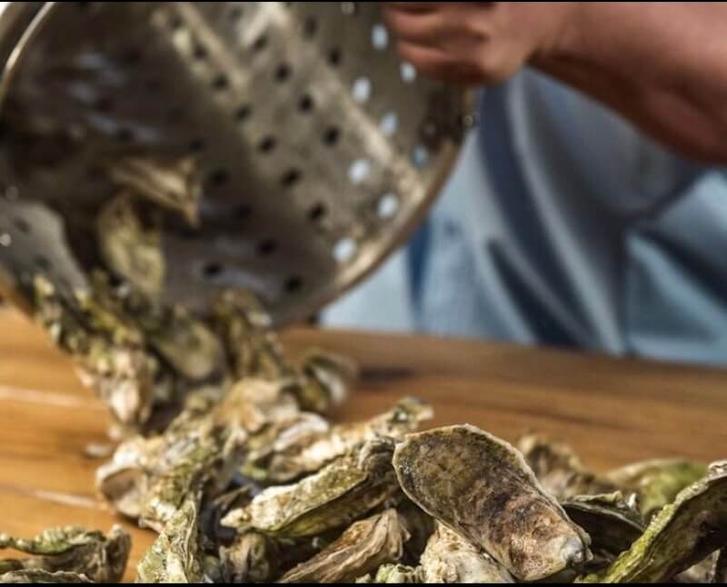 low country oyster roast