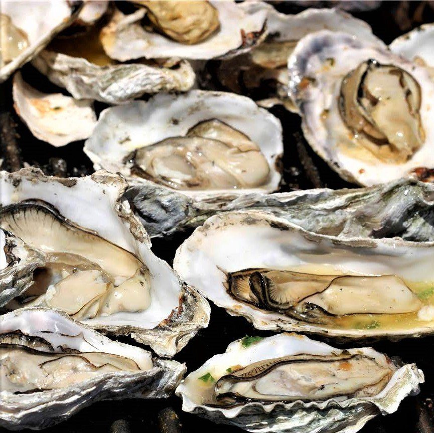 The Best Hilton Head Restaurants: Oysters On The Half Shell