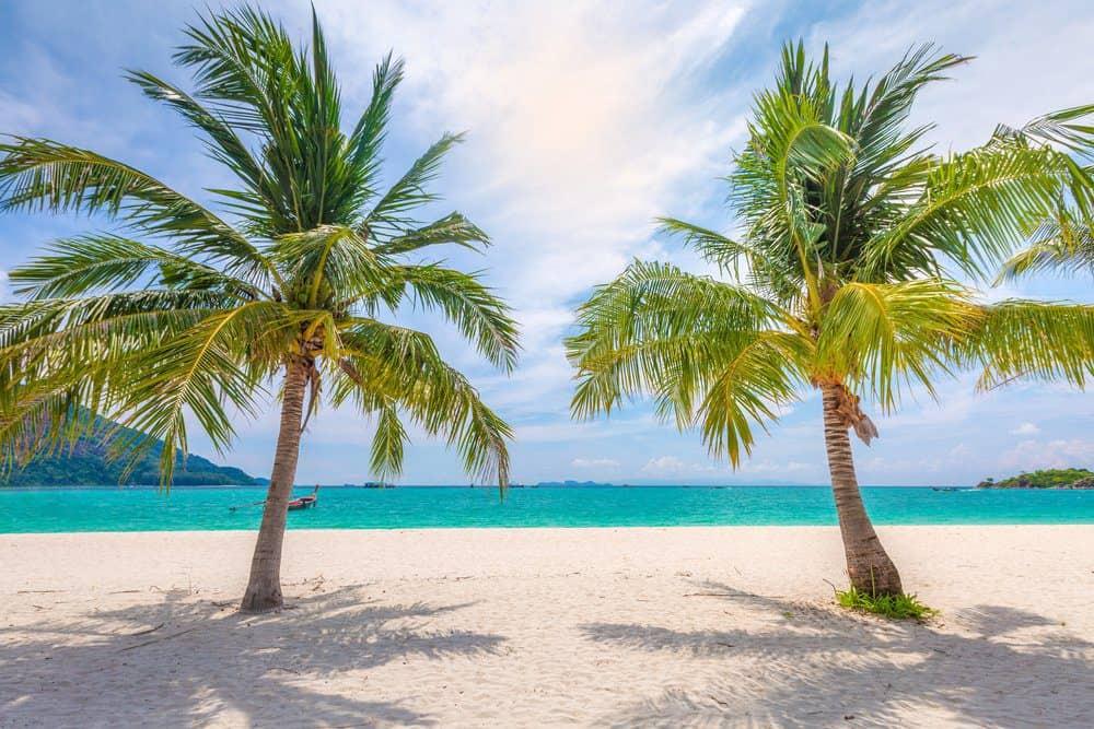 16 Best Things To do In Playa Del Carmen: Beach View