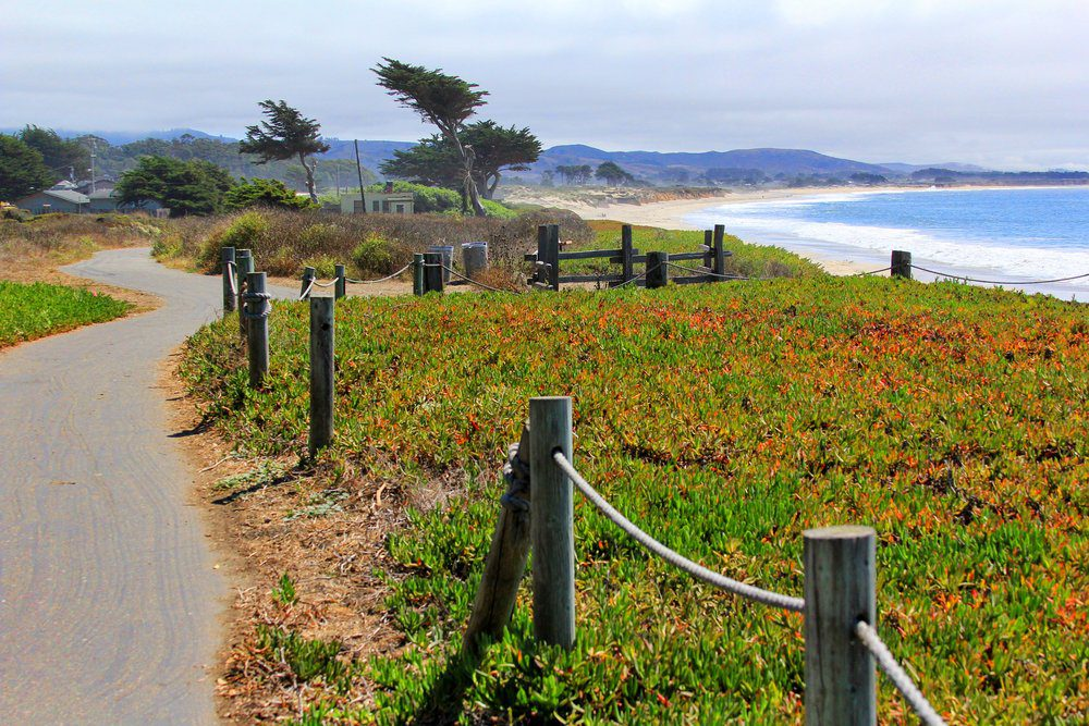 Best Things To Do In Half Moon Bay: California Coastal Trail