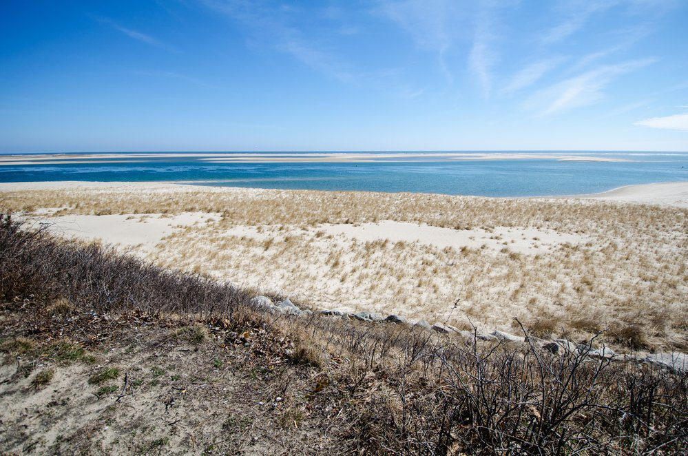 8 Best Things To Do In Cape Cod: Cape Cod National Seashore