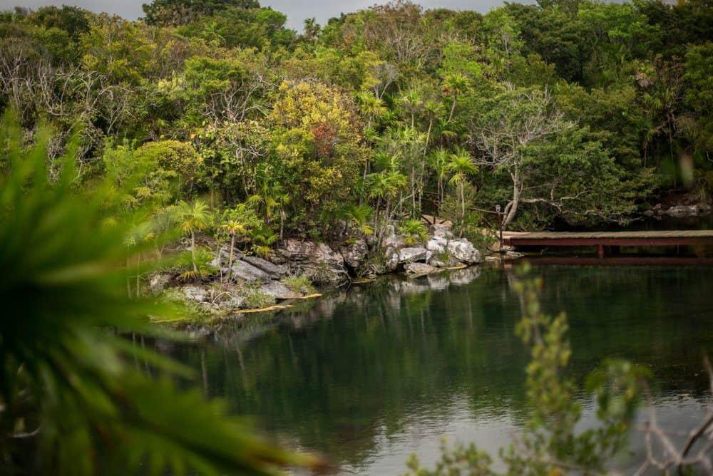 Natural Lagoon in Xel-Ha Park