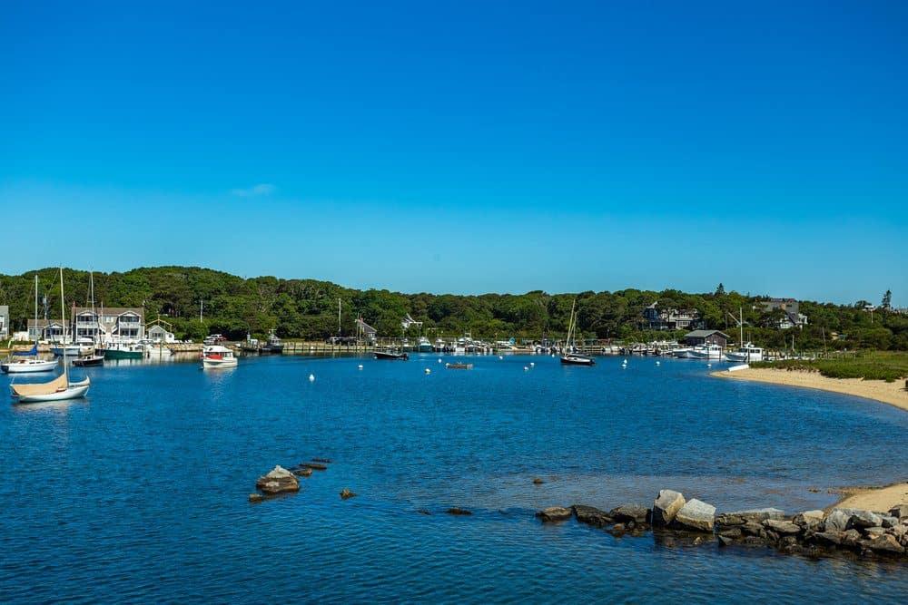 8 Best Things To Do In Cape Cod: Oak Bluffs Harbor