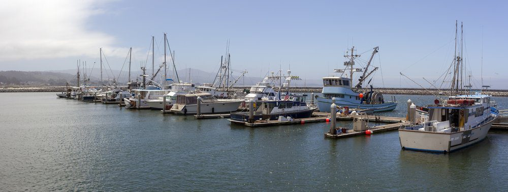 Best Things To Do In Half Moon Bay: Pillar Point Harbor