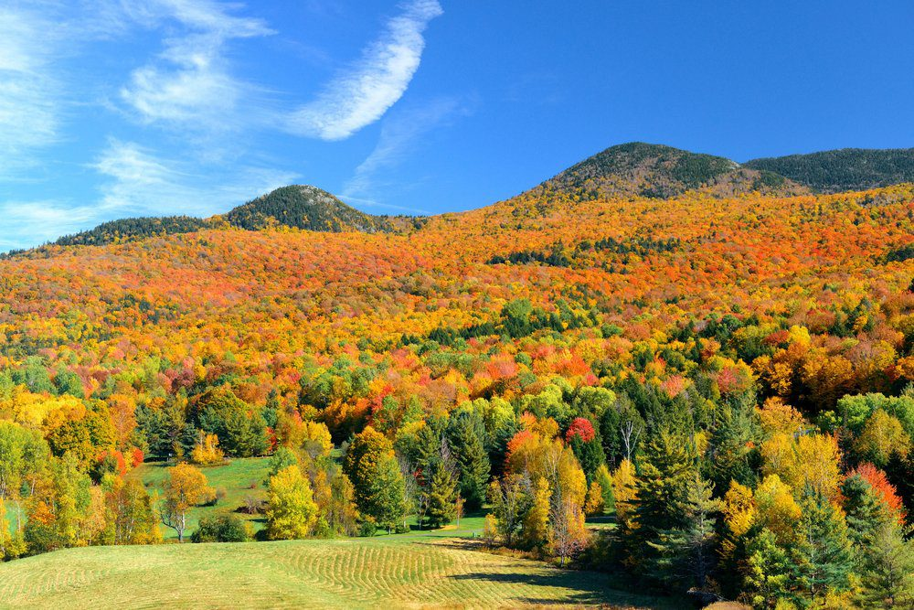 10 Best Things To Do In Stowe VT: Countryside View of Stowe