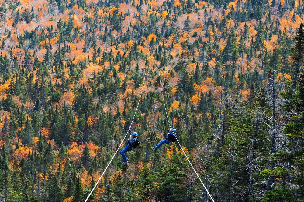 10 Best Things To Do In Stowe VT: Zip Tour