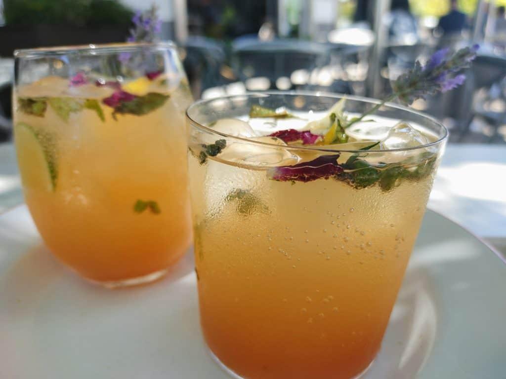 10 Must-Try Sebastopol Restaurants: Apple Juice Spitzer