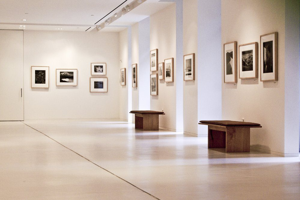 11 Best Things To Do In Chapel Hill: Ackland Art Museum
