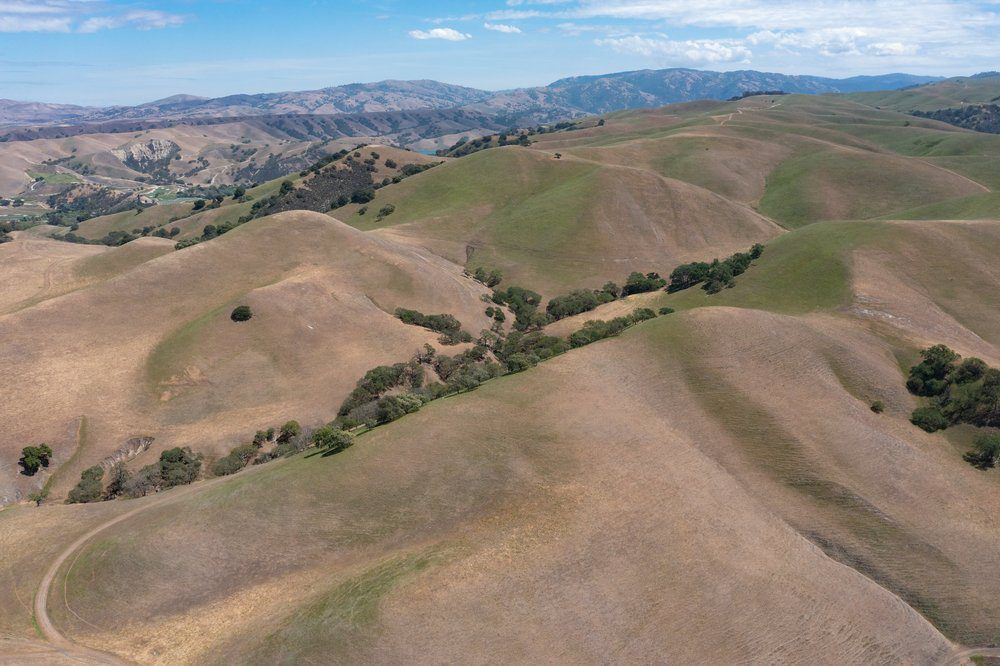 Things To Do In Livermore: Brushy Peak