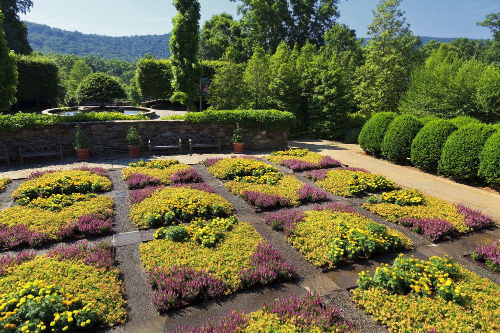 11 Best Things To Do In Chapel Hill: Coker Arboretum