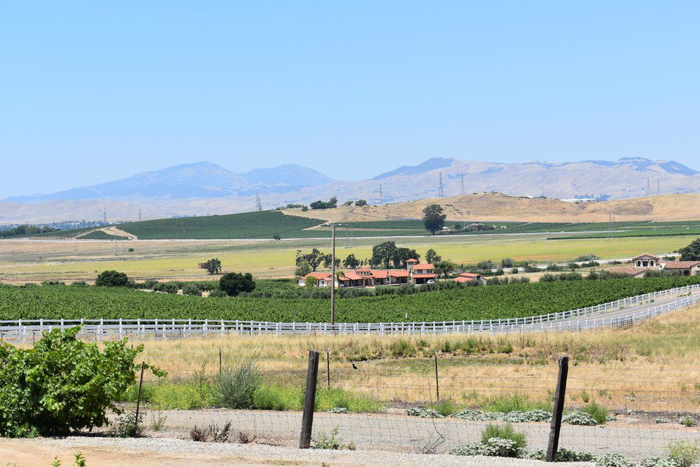 Things To Do In Livermore: Livermore