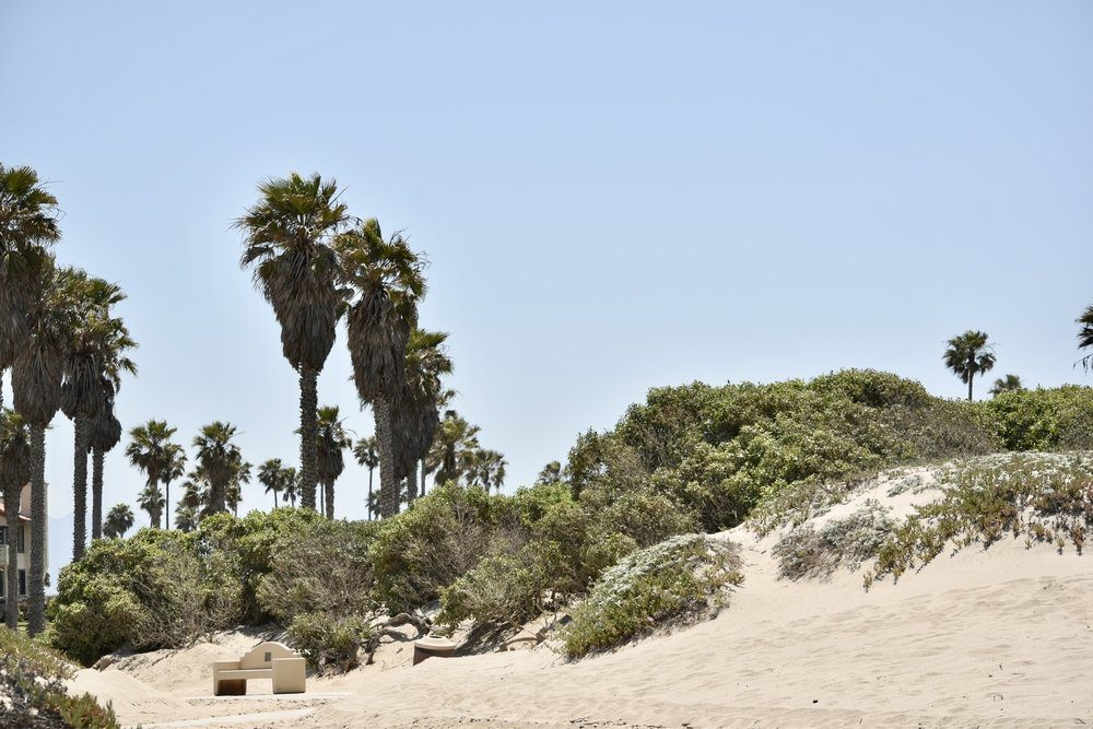The 10 Best Things To Do In Oxnard: Oxnard State Beach and Park
