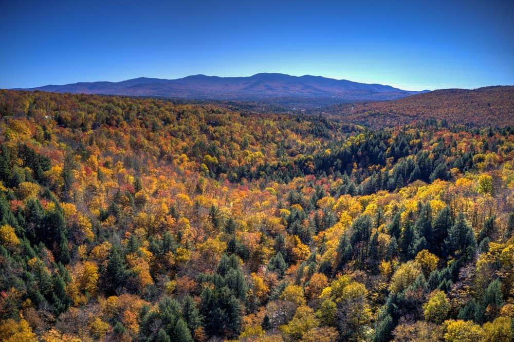 7 Best Breweries In Stowe VT: Peak Fall Foliage in Stowe