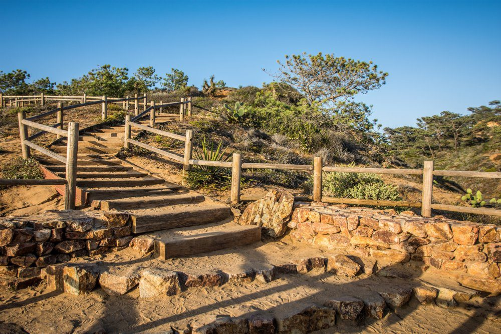 6 Best Things To Do In Del Mar: Torrey Pines State Park