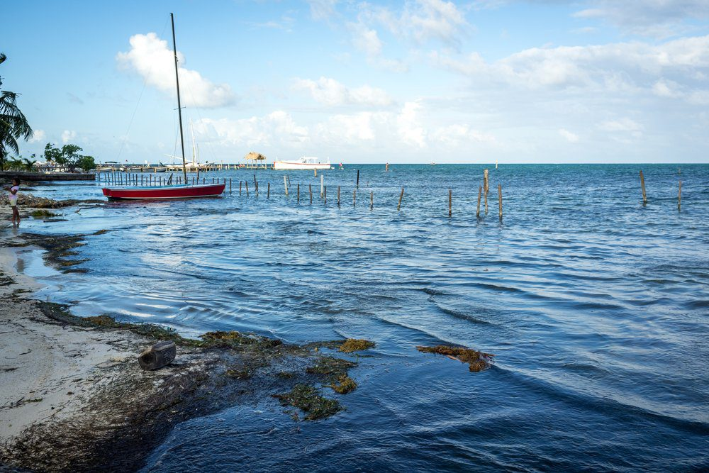 14 Best Things To Do In San Pedro Belize: Caye Caulker