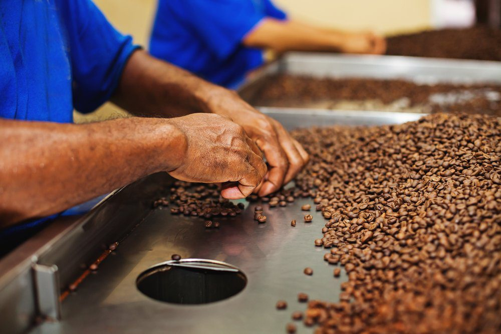Things To Do In Bali: Chocolate Factory