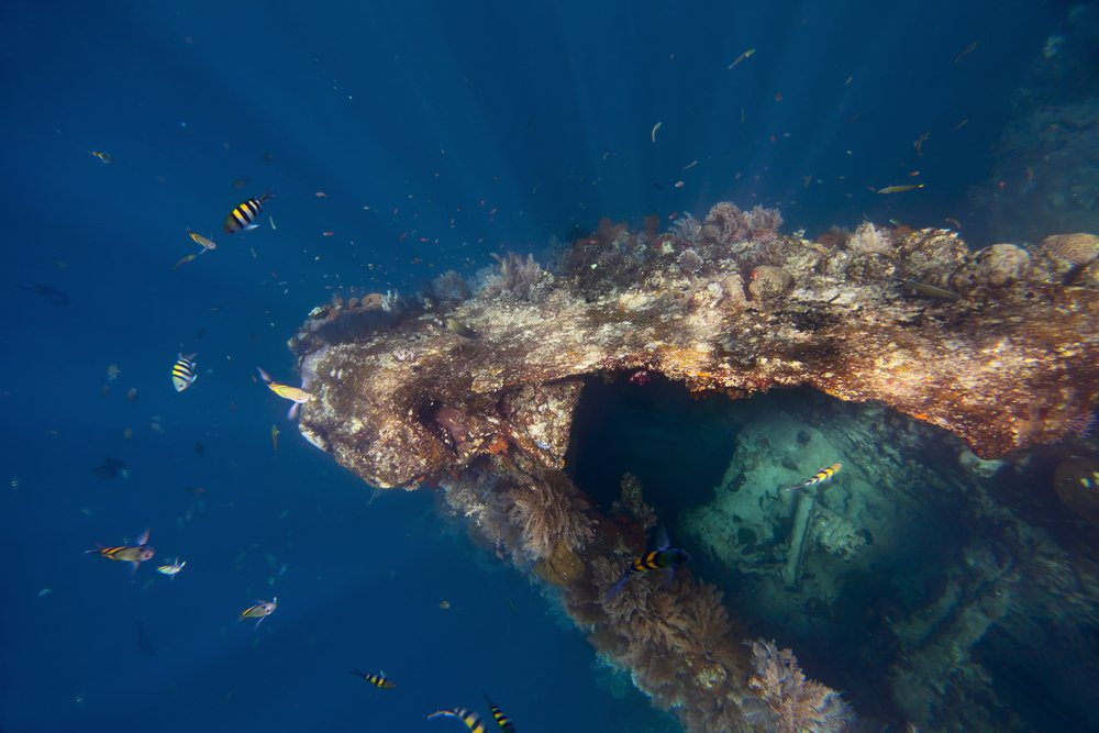 Things To Do In Bali: Diving at Tulamben