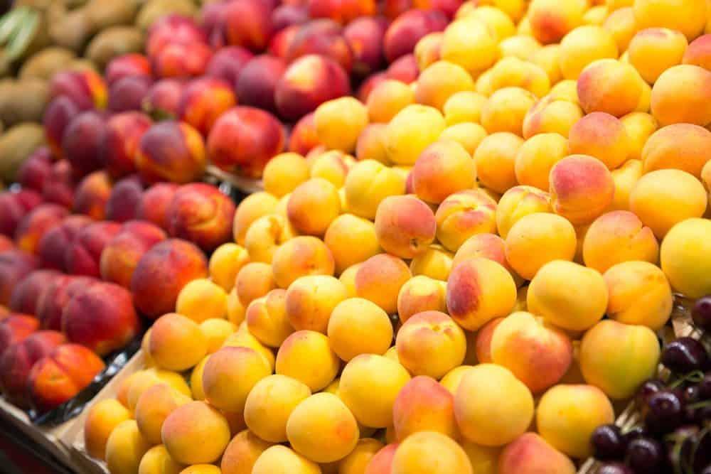 Best Pier 39 Restaurants: Fresh Fruits