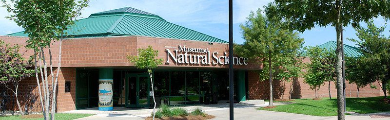 Things To Do In Jackson MS: Mississippi Museum Of Natural Science