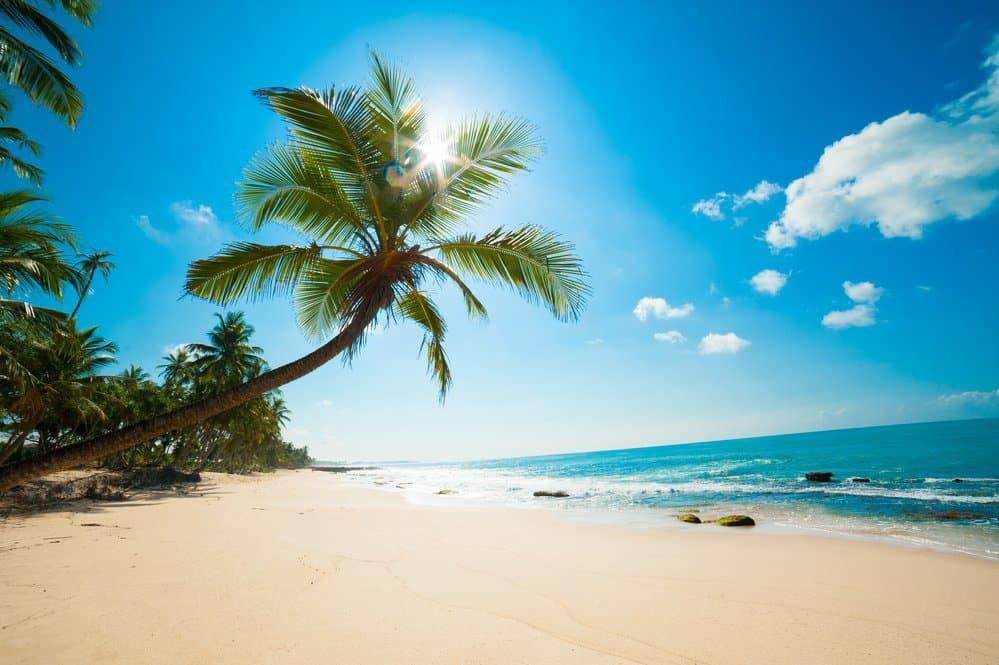 Things To Do In Cozumel: Playa Mia Grand Beach Park