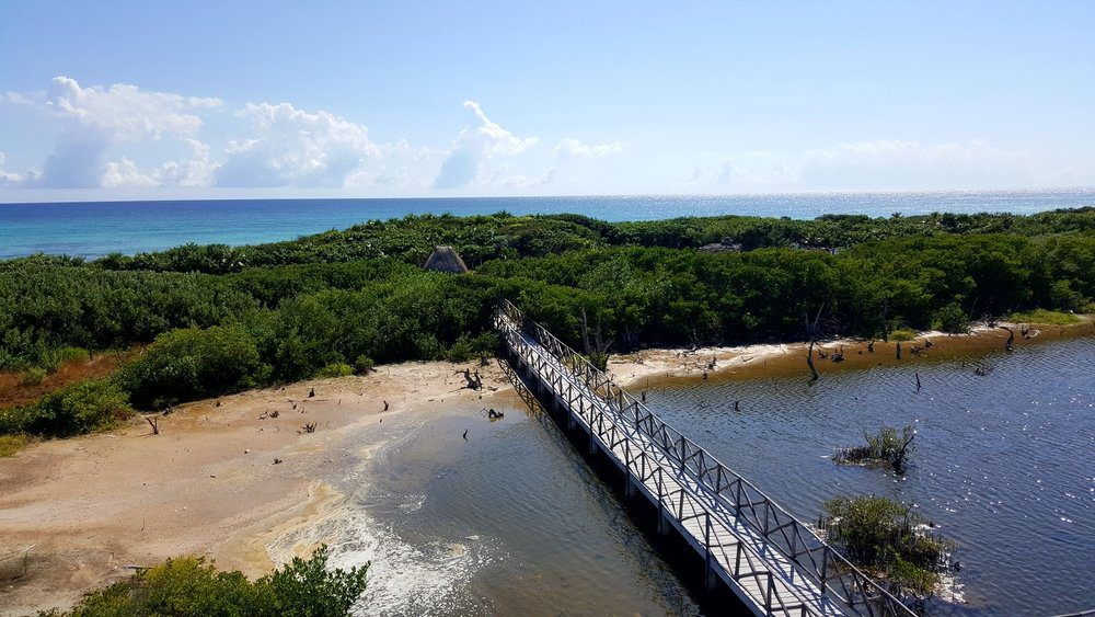 Things To Do In Cozumel: Punta Sur Ecological Park