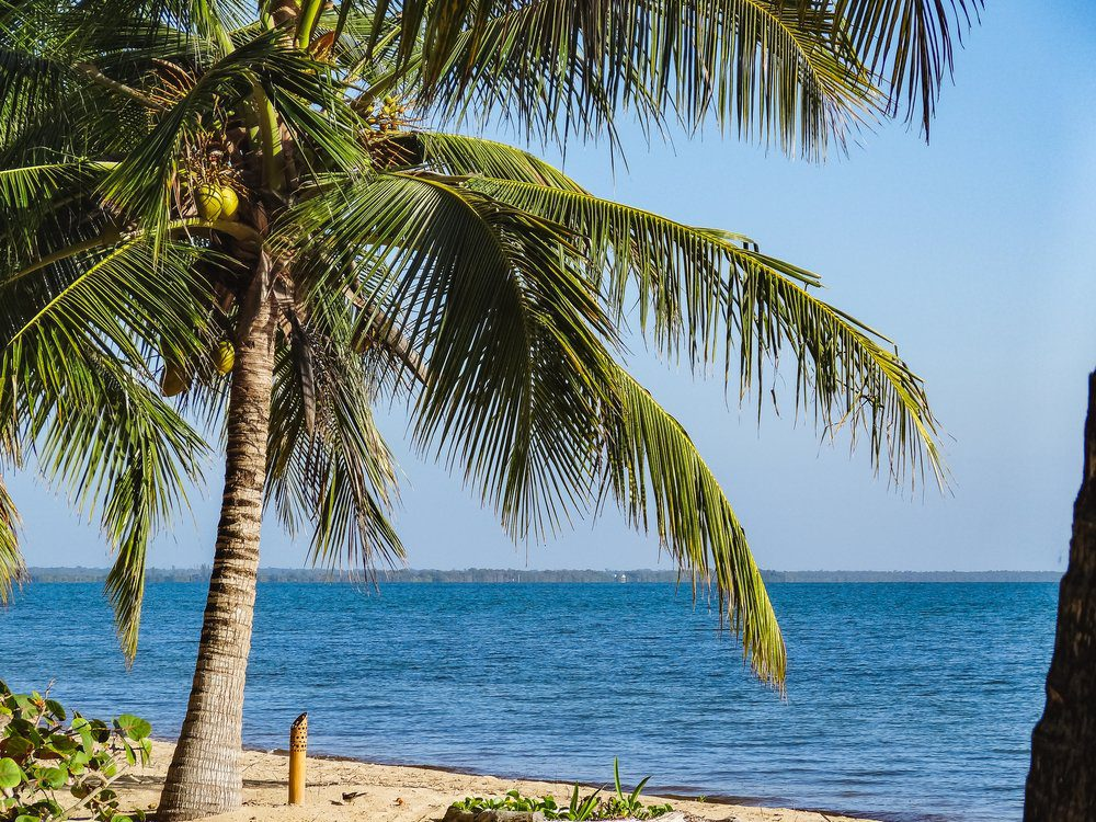 14 Best Things To Do In San Pedro Belize: San Pedro Beach