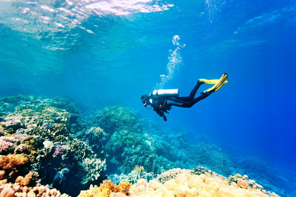 Things To Do In Placencia: Scuba diving