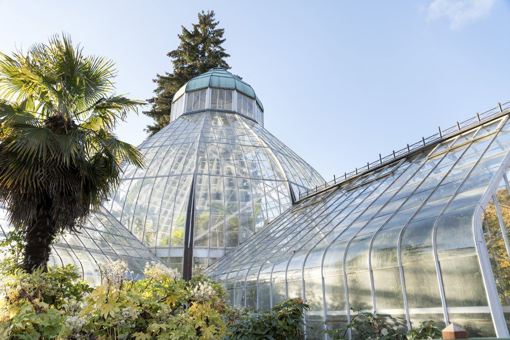 Things To Do In Tacoma: Wright Park